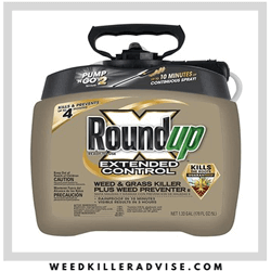 best for lawn Roundup Extended