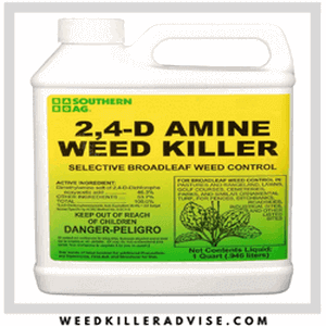 best weed killer product
