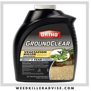 Ortho Ground clear Weed Remover 300x300