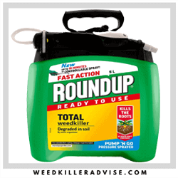 Roundup-Best-weed-killer-UK