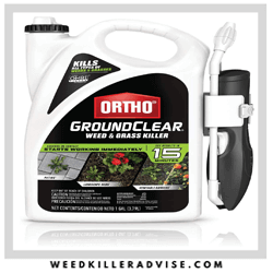 OrthoGroundClear-Pet-Friendly-Weed-Killer