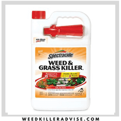 spectracide weed killer for flower beds