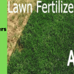 Best Lawn Fertilizer for Your Yard - 2021 Buyer's Guide & Reviews