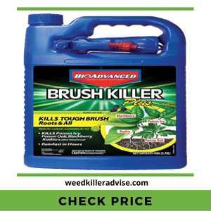 BioAdvanced 704655A Brush Killer Plus