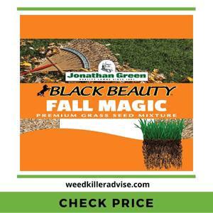 Jonathan-Green-10765-Fall-Magic-Grass-Seed
