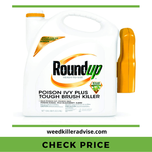Roundup Ready-to-Use Poison Ivy