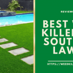 Best Weed Killer for Southern Lawns 2021- Top Reviews & Comparisons